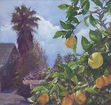 Miller-LemonTreeInMarch.jpg