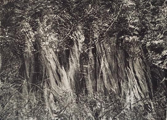 goldberg-darkforest.jpg