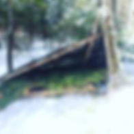 bushbed.jpg