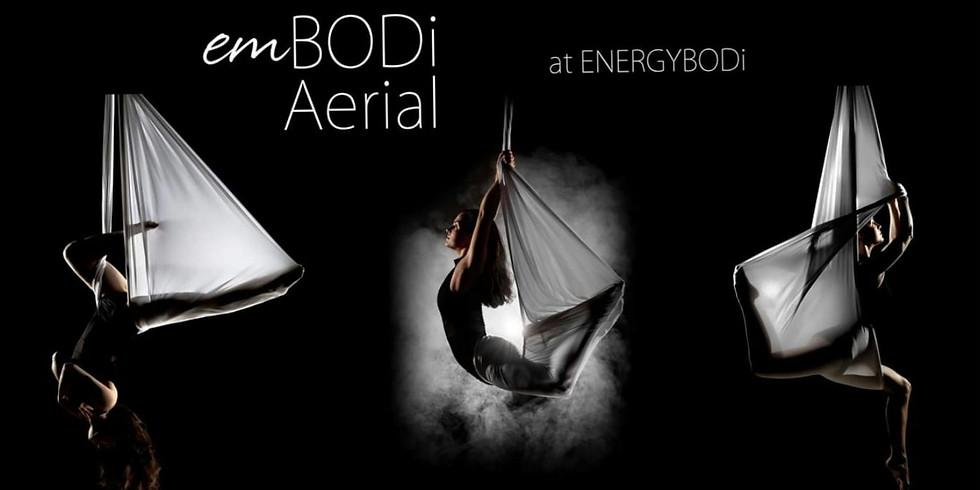 EMBODi Aerial Fundamentals