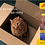 Thumbnail: Josera Daily Cat