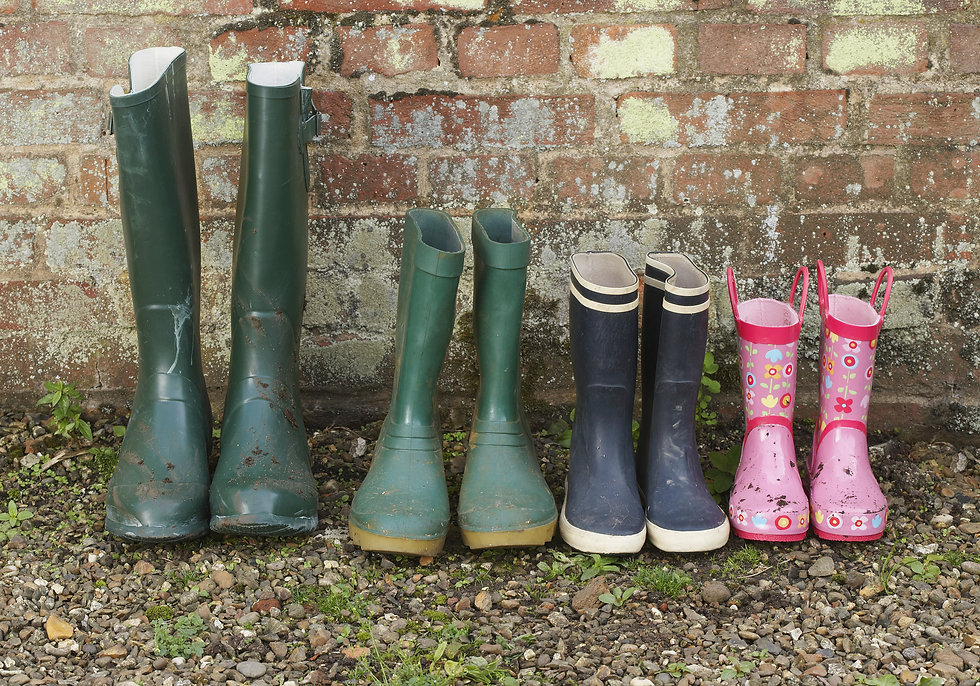 View of a variety of rubber boots in a r