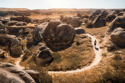 Walking along the hoodoo Trail in writing on stone provincial park, Canada