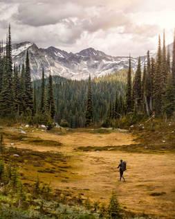 Hiking through alpine meadows in Revelstoke National Park, Canada