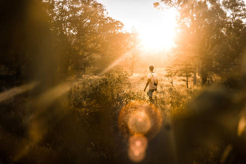 Traveller walking through bushes at sunset in Australia
