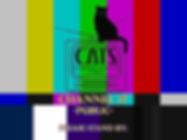 Ch17 Screen.jpg