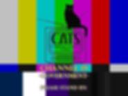Ch19 Screen.jpg