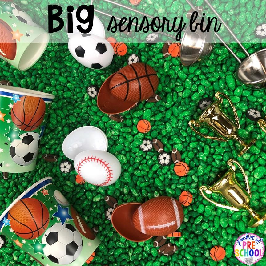 Sports-Themed Sensory Bin for Toddlers