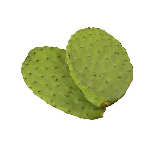 Nopales Frescos con Espinas (fresh cactus with thorns) 1lb