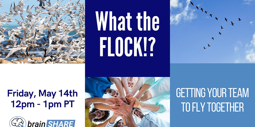 What the FLOCK?! Getting your team to fly together