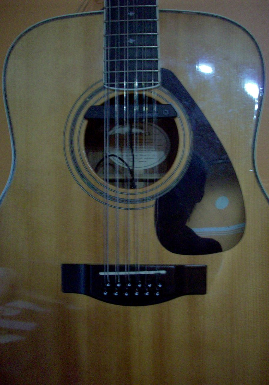 12 String Yamaha