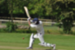 cricket is on of our main sports