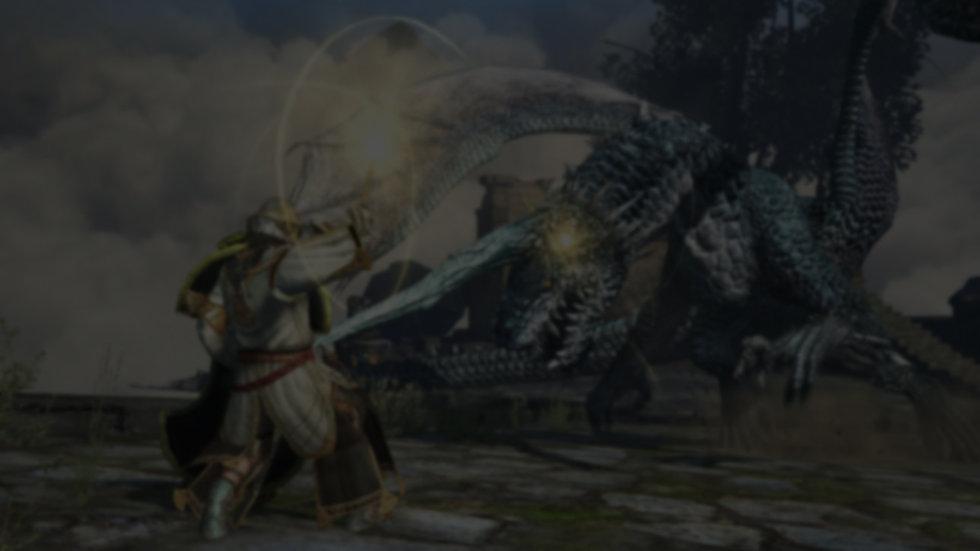 DragonsDogmaOnline-201 (1).jpg
