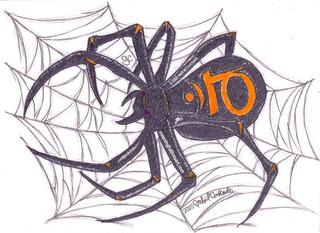 Spider Sacral Chakra Energy