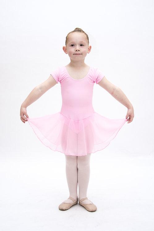Pre Juvenile &Preparatory Ballet Dress