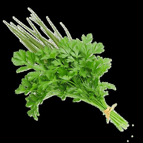 Tempero Verde ( Cebolinha e Salsa)