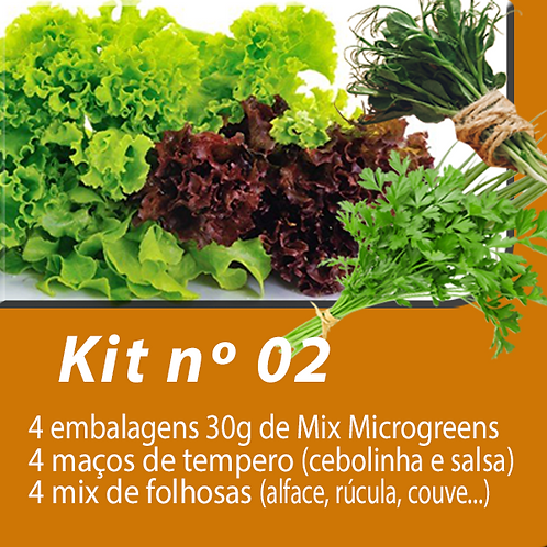 Kit 02 - Cesta de produtos - assinatura