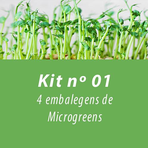 Kit 01 - Cesta de produtos