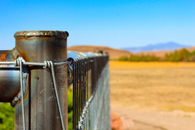 your favorite fence.jpg