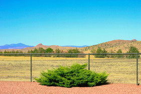 some more good looking fence edited.jpg