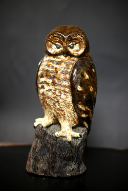 Owl, 2002