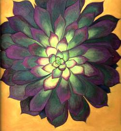 Catus Flower scan 002.jpg