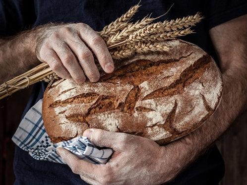 Filone di Grano Duro con farina Bio
