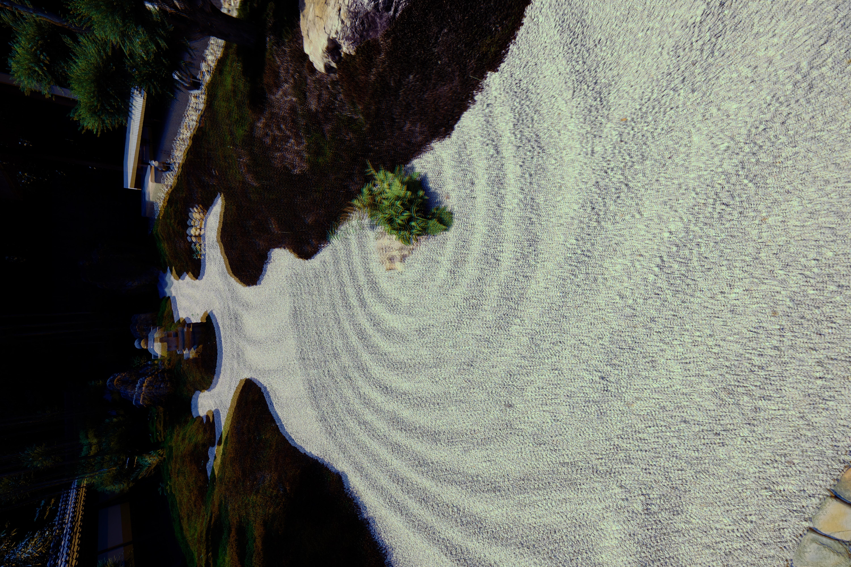 psychedelic Japanese garden