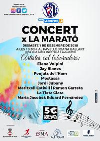 Concert 2018.jpg