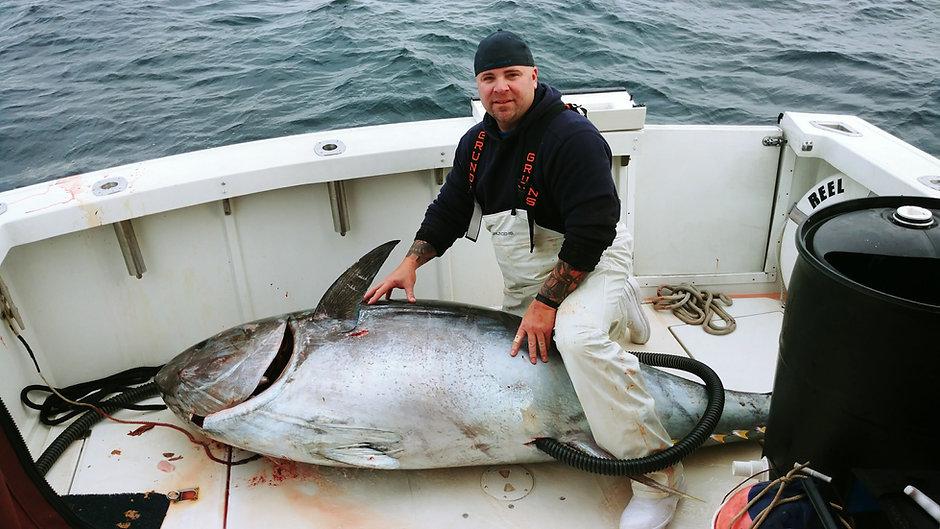 Giant Blue Fin Tuna