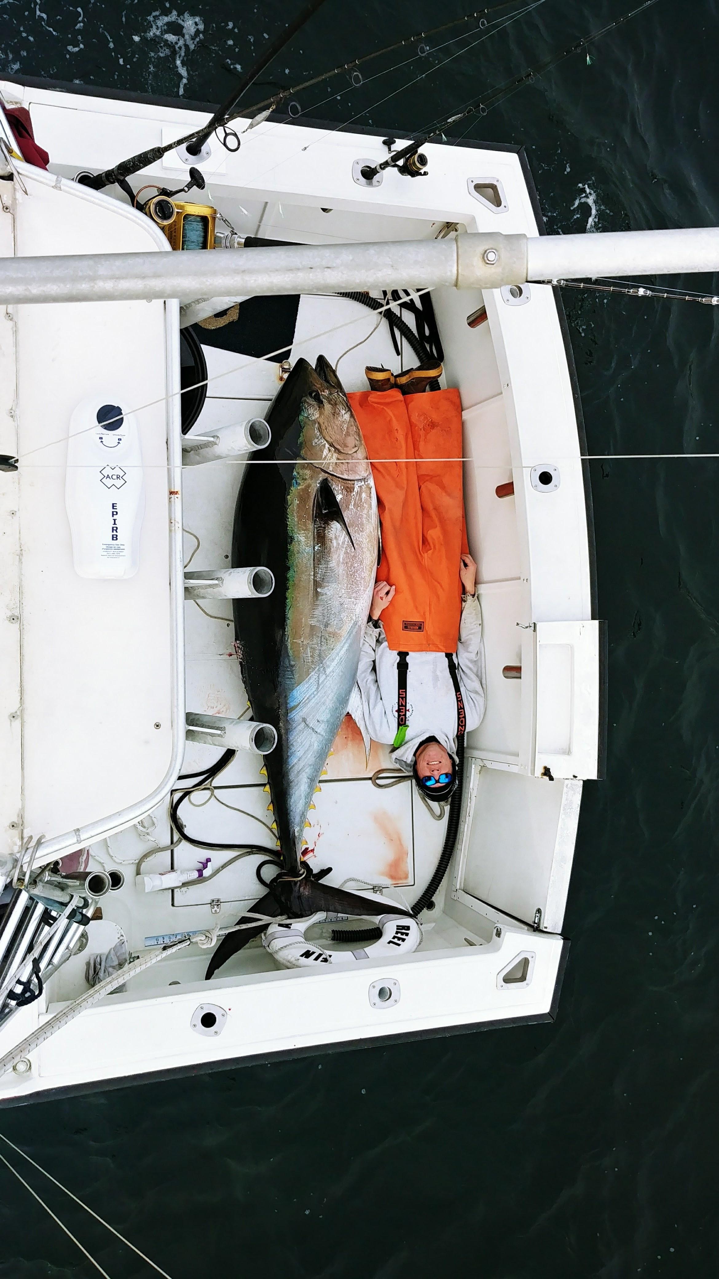 Big Game - Bluefin Tuna