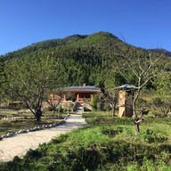 Yewong Eco Lodge | Apple Orchard