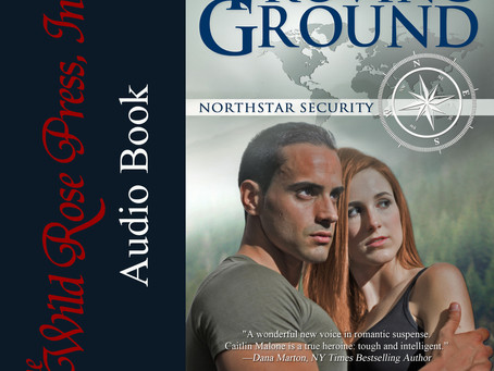 Free Audio for the Northstar Security Series