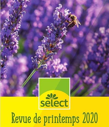 semences%20WYSS_edited.jpg