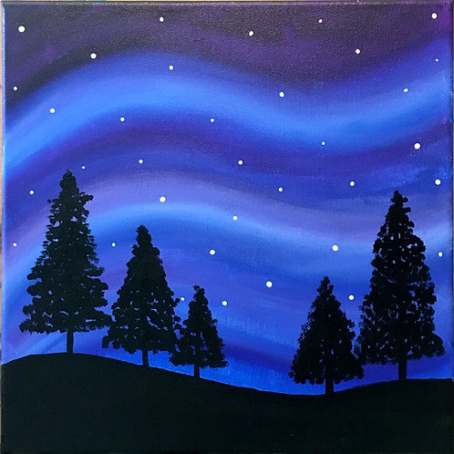 Night Sky with Pine Trees Canvas