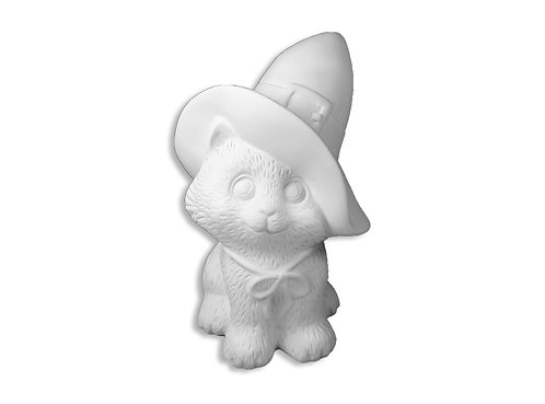 Cat with Witch Hat