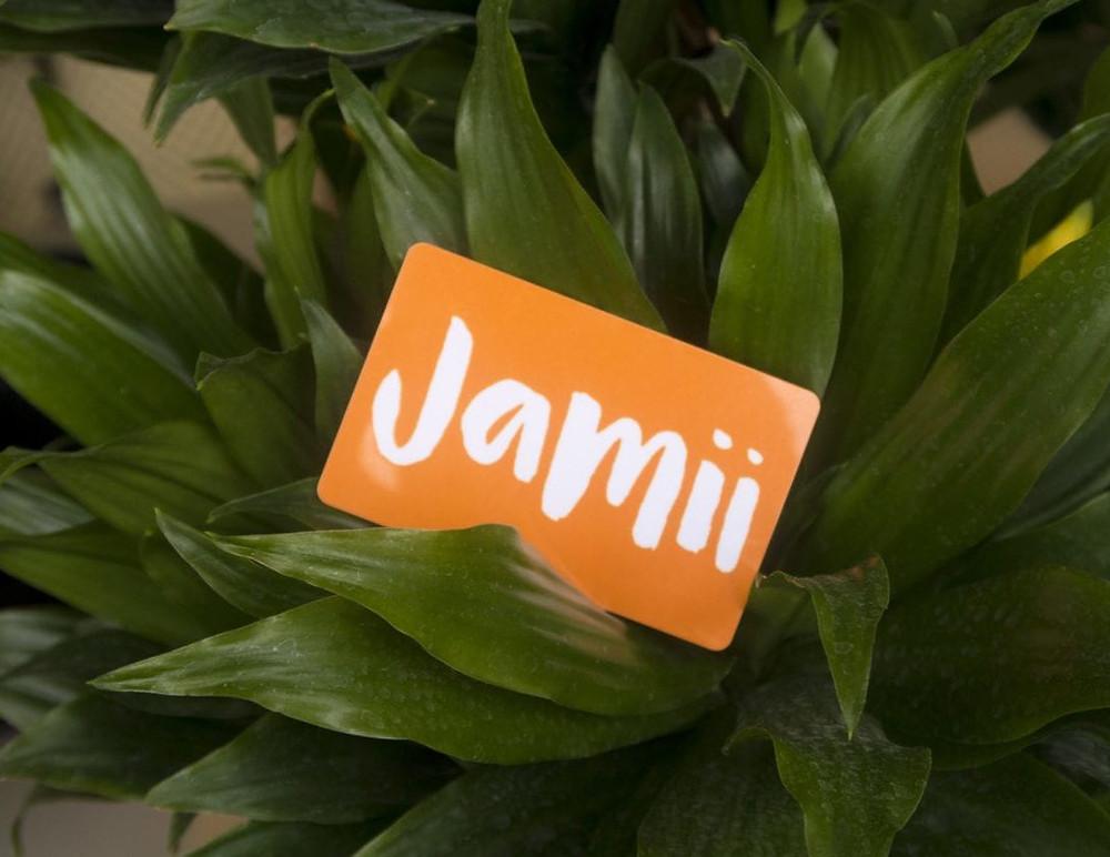 www.lovejamii.com