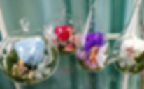 roses_éternelles_en_bulles_verrre_edited