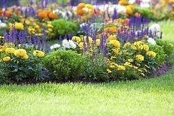 flower-garden2-400x266.jpg