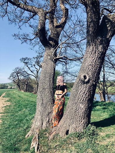 Felicity Tree.jpg