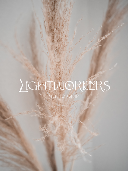 lightworkers mentorship pic2.png