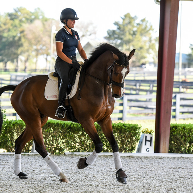Jerry schooling in Florida in 2019