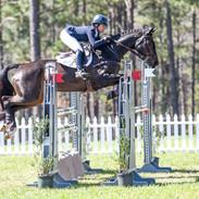 2018 Carolina International show jumping
