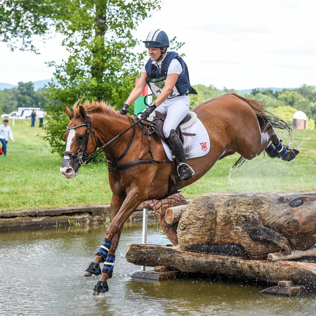 Polly at the 2019 Great Meadow International