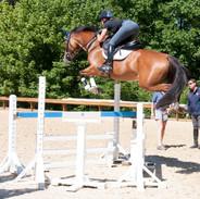Zoe training with David O'Connor