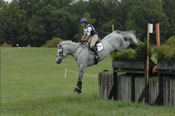 Tyson at Middleburg Horse Trials