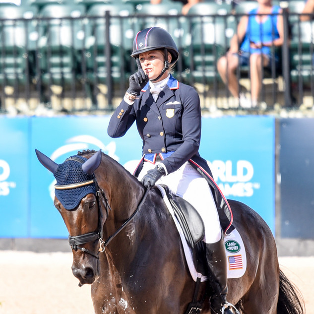 2018 World Equestrian Games