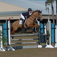 Buck competing at the Ocala Horse Park