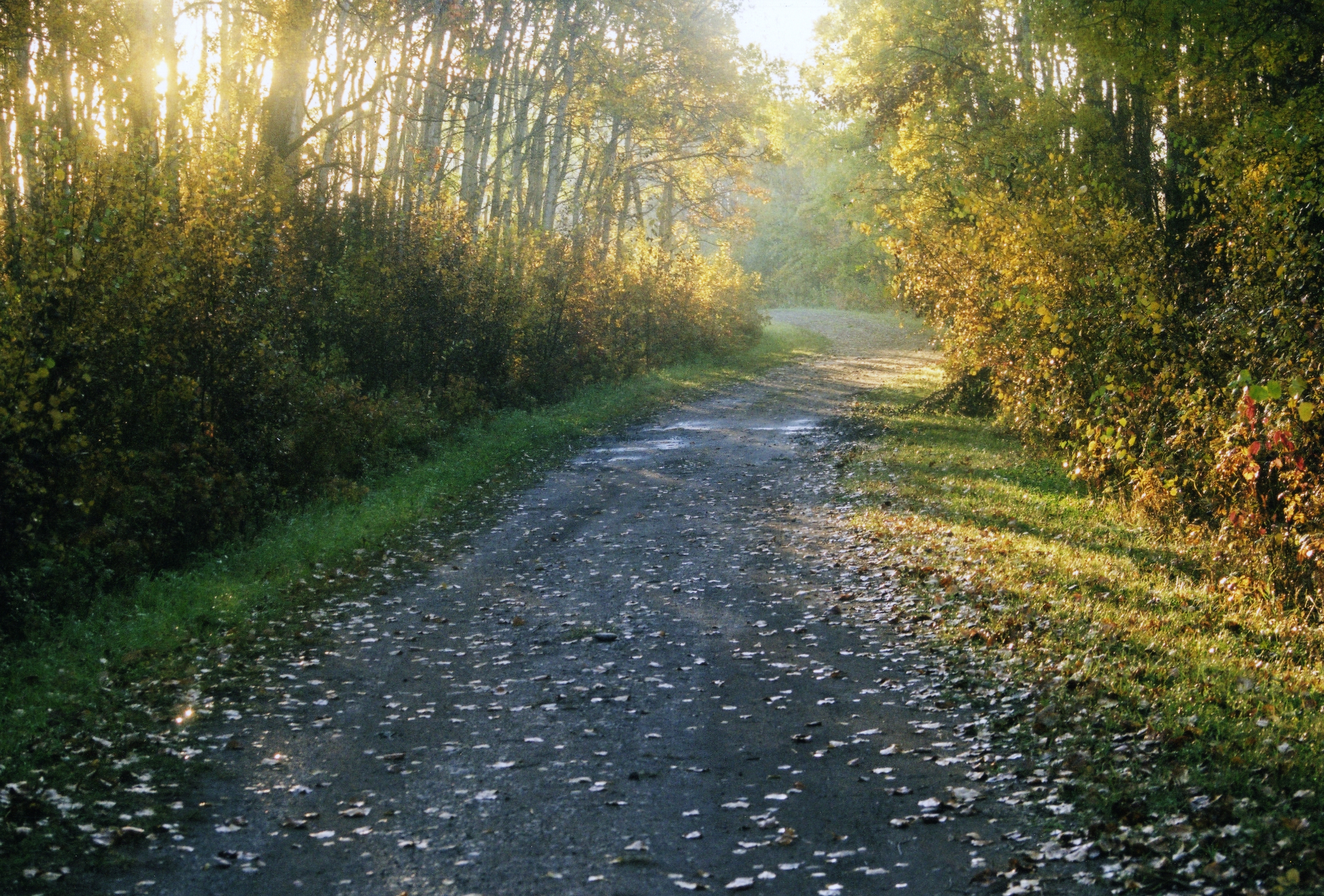 Tipi Creek Trail in Autumn