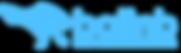 BALINB LOGO BLUE FULL.png